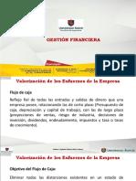 Gestión Financiera 6
