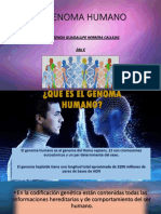 EL-GÉNOMA-HUMANO.pptx
