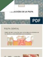 Patologías de La Pulpa