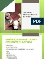 Inmunoprofilaxis en Bovinos 2017