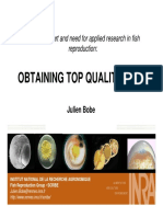 J+Bobe+Egg+quality+Reprofish+Oct+2008