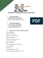 Promocion y Prevencion en Salud Ocupacional