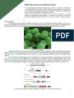 Qué Es La Tecnología CRISPR a Color