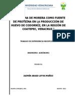 Harina de morera para produccion de huevos de codorniz.pdf