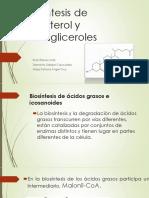 Biosintesís de Colesterol y Triacilgliceroles