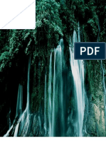 Force of Nature -- The Wisdom of Drysdale -- 2010 07 25 -- Qualicum, British Columbia -- CCS -- Falconer -- Violation -- MODIFIED -- PDF