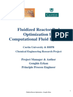Fludizied Reactor Bed Optimization 1