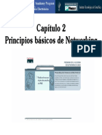 CAPITULO2_PAND.pdf