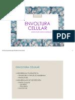 Envoltura celular