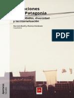 Migraciones Patagonia