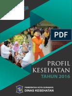 Profil Kesehatan  Surabaya 2016