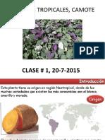 Cultivos Tropicales%2c Camote