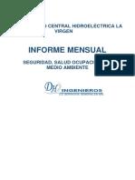 d.h. Informe Mensual Eneroword