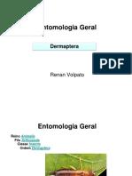 Trabalho Entomologia Geral Dermaptera