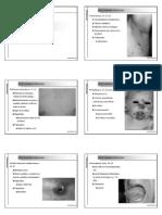 Dermatología Diapositivas B y N 2004-2005