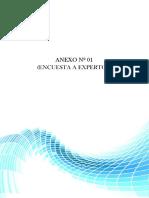 Ok_separador Formatos de Anexos