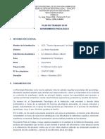 plandetrabajoagro2014-140325102003-phpapp01