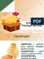 Anatomia e Fisiologia Das Aves
