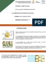 6.2-CALIBRACON-DEL-SISTEMA-ROCA-FLUIDOS.pdf