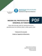 Protocolo de Análisis