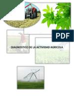 Diagnostico de La Actividad Agricola