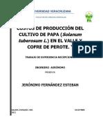 costos de produccion del cultivo de papas.pdf