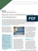 Apical Limit 1