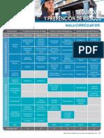 Seguridad Prevencion de Riesgos Malla Curricular 2015