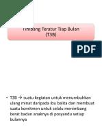 PPT T3B