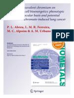 Cr(VI) Bioenergetics