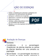 patometria-240907