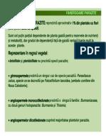 Fanerogame Parazite Si Plante Carnivore