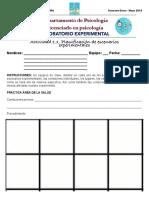 Actividad 1.1 Planificación de escenarios experimentales LE 2018