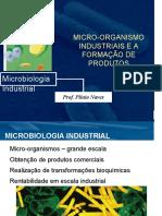 9. Bactérias Industriais e Seus Produtos
