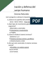 Coordinación y Defensa Del Cuerpo Humano