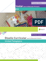 DisenÞo Curricular PBA-UP