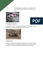 20 animales de la prehistoria que aun viven.docx