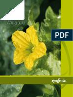 Catalogo Melon Sandia Andalucia 1