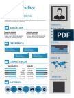 plantilla-curriculum-vitae-13.doc