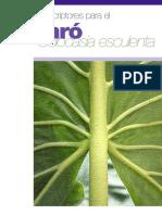 Descriptopres Para El Taró Colocasia Esculenta 22