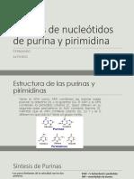 Síntesis de Nucleótidos de Purina y Pirimidina