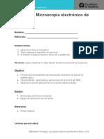 Practica de Laboratorio 3.docx