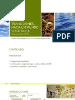 TRANSICIONES-HACIA-UN-MUNDO-SOSTENIBLE_FINAL.pptx