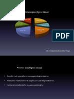 procesos-psicolc3b3gicos-bc3a1sicos1