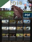 Calendar Ioa 3