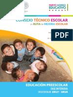 Fase Intensiva Cte 2017-2018 Preescolar