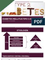 Diabetes Mellitus Tipo 2 Etiologia