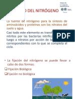 Unidad 1 Bioquímica Del Nitrógeno