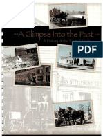 A Glimpse Into the Past a History of the Town of Scott