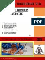 232064578 Informe de Ensayo de Ladrillos